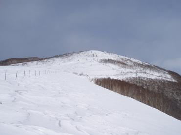 2011_006