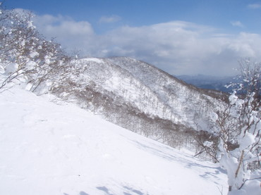 2011_015