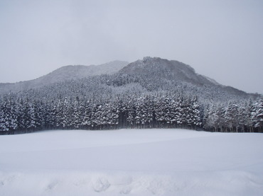 2011_004